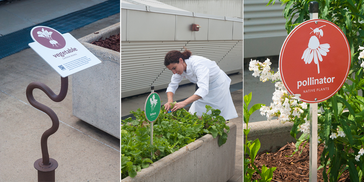 Convention Center rooftop planter box signage. » »